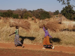 Ladies Carrying Grass